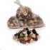 Afbeelding van Trommelmix ruwe edel- en sierstenen 1 kilo