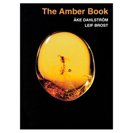 Afbeelding van The Amber Book, Ake Dahlstrom, Leif Brost