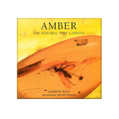 Afbeeldingen van Amber, The Nature Time Capsule