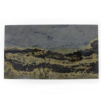 Afbeeldingen van Dendriet Landschaps Jaspis