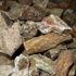Afbeelding van Versteend Hout Madagascar 350 gram